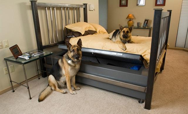 Сейф-кровать Queen BedBunker.